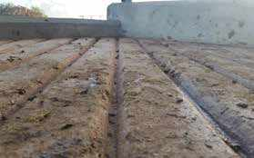 Concrete Reasons for Lameness Part 6 Groove does not have a 90 degree edge